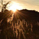 Tongrube und Sonnenuntergang