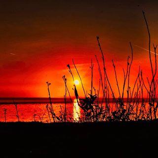 Ein traumhafter Sonnenuntergang auf Zeeland🍀🍀🍀 #sonnenuntergang #sunset #sunrise #naturephotography #naturbild #naturshot #sunbeam #instagood #instasunsets #instago #nordsee #zeeland #sea #nice #instagram #red #outdoors #outside #moments #moment #nikon