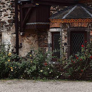 Wie bei Dornröschen 🍀❤🙏 Oder aber im Mittelalter?  Was meint ihr?☘ #mittelalter #alt #old #middleage #schloss #travelphotography #travelgram #instapic #instagood #mosel #mosel #dornröschen #verzaubert #dankbarkeit #thankful #thankful🙏 #zufriedenheit #dankbar