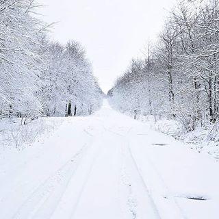 Von Frühling keine Spur! Der Winter ist zurück. Hoffe er bleibt nicht zu lange 😰🙄 #winter #winterwonderland #mengerskirchen #instagood #instagram #insta #instawinter #westerwald #mussdassein #schnee #snow #wonderful_places #nature #naturephotography #naturelovers #nature_of_our_world #wanderlust #winter #wintertime #winterzeit
